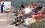 Cte dIvoire - Les crocodiles de Yamoussoukro dvorent leur gardien (VIDEO)